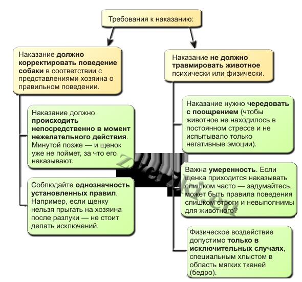 Схема рассказывает, каким условиям должно отвечать правильное наказание.