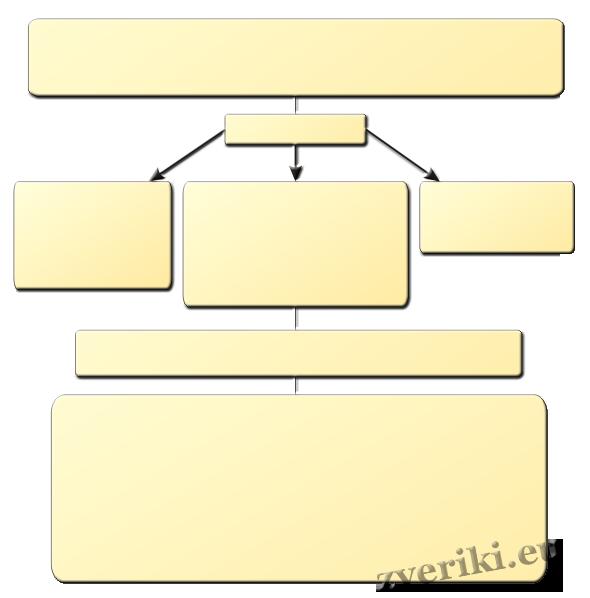 Схема: общие сведения о пироплазмозе
