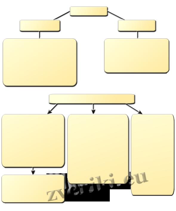 Схема Профилактика пироплазмоза
