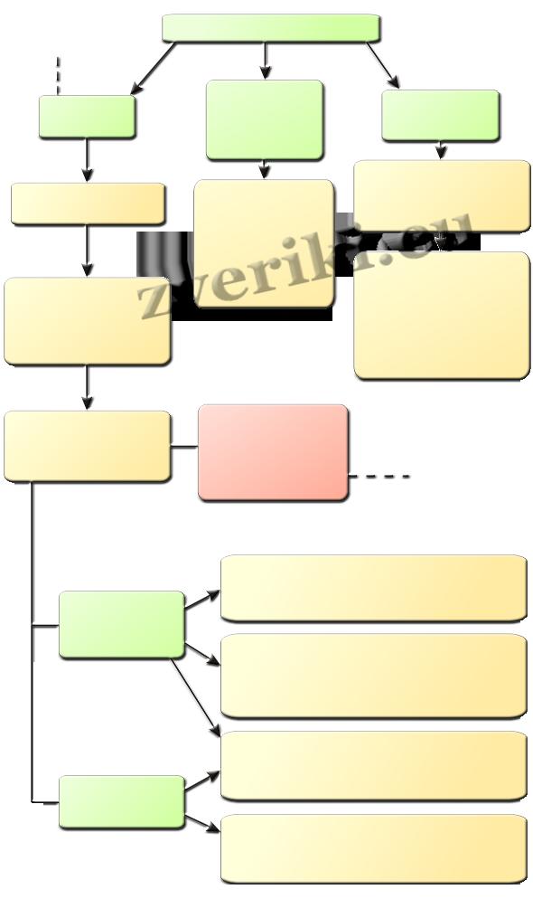 Схема лечение саркоптоза
